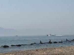 沖に見えるのは淡路島です